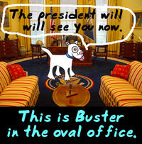 Buster_oval