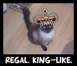 Kingmoses