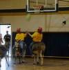 Donkeyball